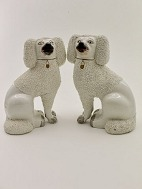 Staffordshire 